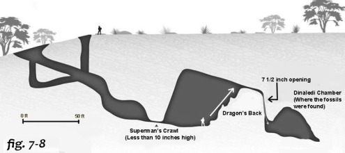 7-8 cave map naledi